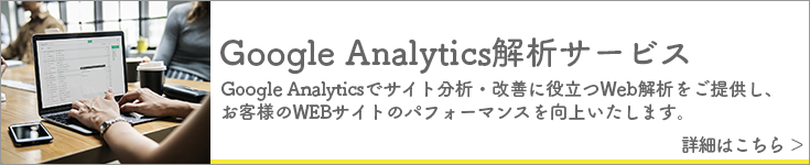 Google Analytics解析サービス