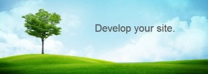 develop your site